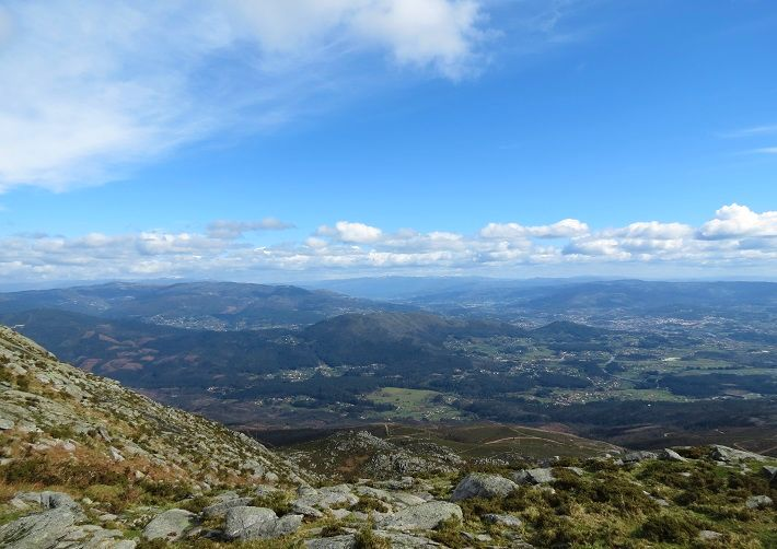 North of Portugal walking tours & hiking in Serra de Arga Natural Park spot wildlife, including wild horses, iberian frogs and Iberian wolf. Arga mountain Caminha Viana do Castelo